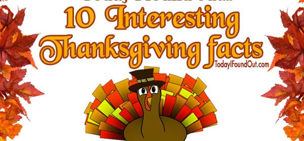 Thanksgiving-infographic thumb