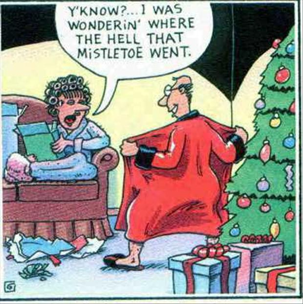 Delightful Funny Christmas Pictures Part - 12: Tagged ...