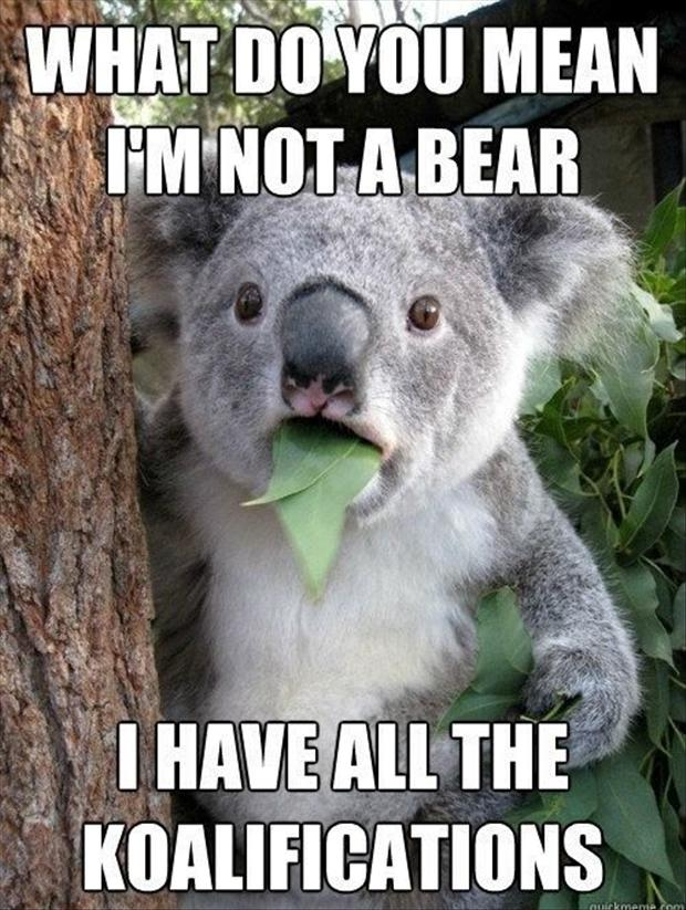Funny Pun Pictures 38 Pics