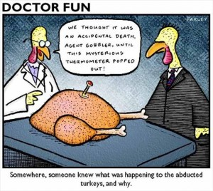 funny thanksgiving pictures (15)