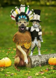 funny thanksgiving pictures (19)