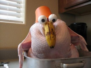 funny thanksgiving pictures (22)
