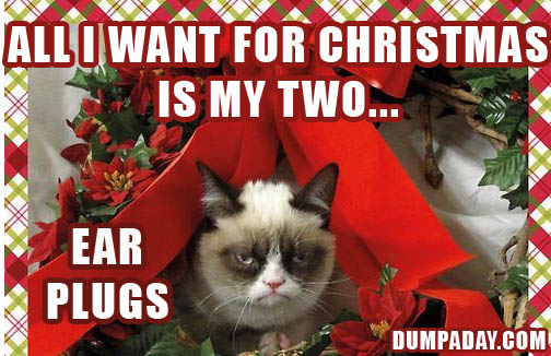 grumpy cat, all i want for christmas is my two front teeth - Dump ...