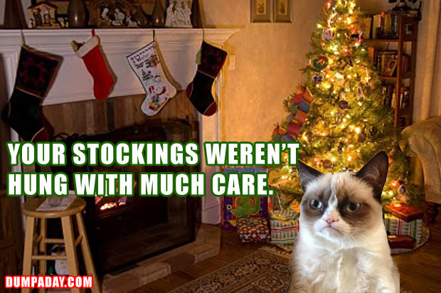 grumpy cat, and the stockings were hung with care, christmas ...