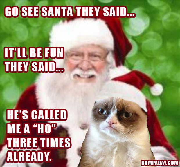 Funny Christmas Memes For Friends : Funny grumpy cat meme christmas pictures