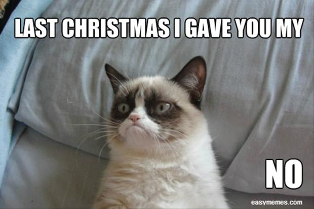 grumpy cat, singing christmas songs - Dump A Day