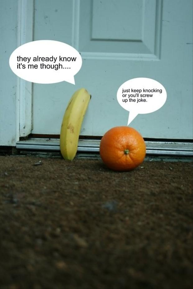 knock knock jokes, funny pictures