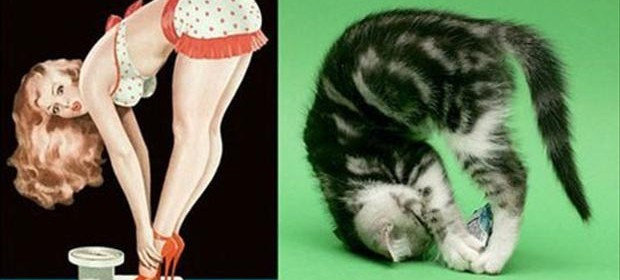 pin up girls and cats (1)