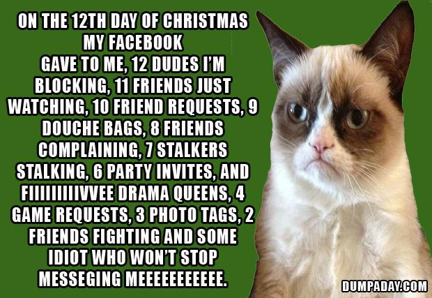 12 days of christmas, grumpy cat - Dump A Day