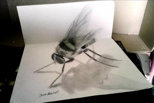 Anamorphic 3D Drawings- Bee