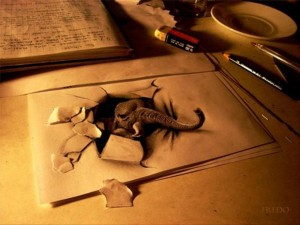 Anamorphic 3D Drawings- Elephant