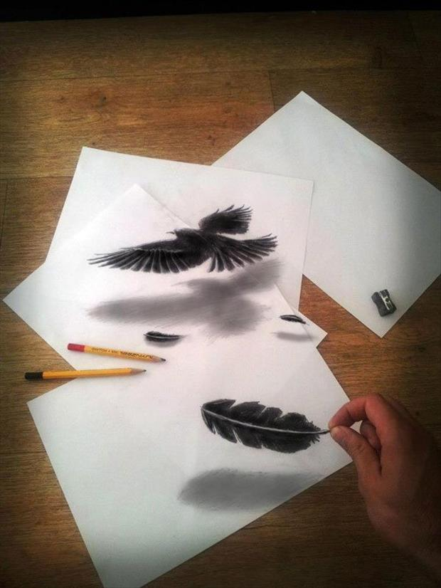 Anamorphic 3D Drawings- Raven Feather
