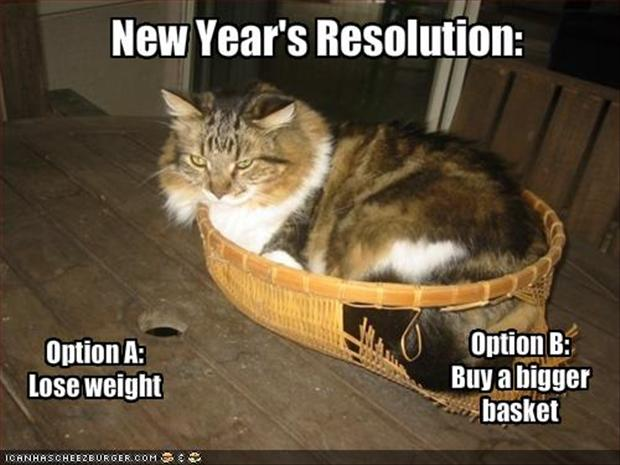 Funny Meme For New Year : Funny new years resolutions fat cat dump a day