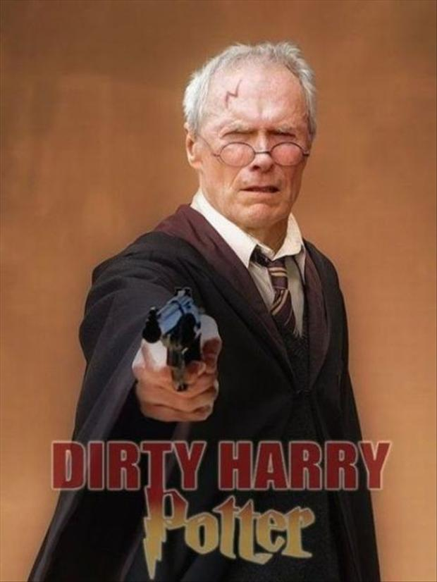 Dirty Harry Potter, Funny Pictures