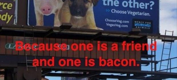 funny billboard sign, bacon