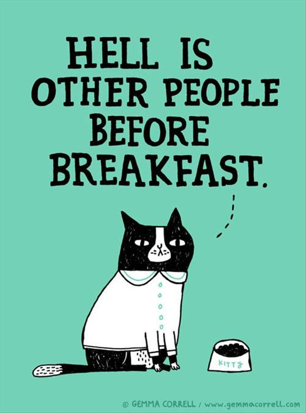Superb Funny Cat, Morning Person Quotes