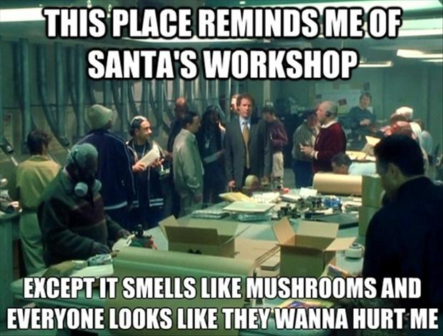 Funny Quotes From Elf Funny Quotes New Elf Quotes
