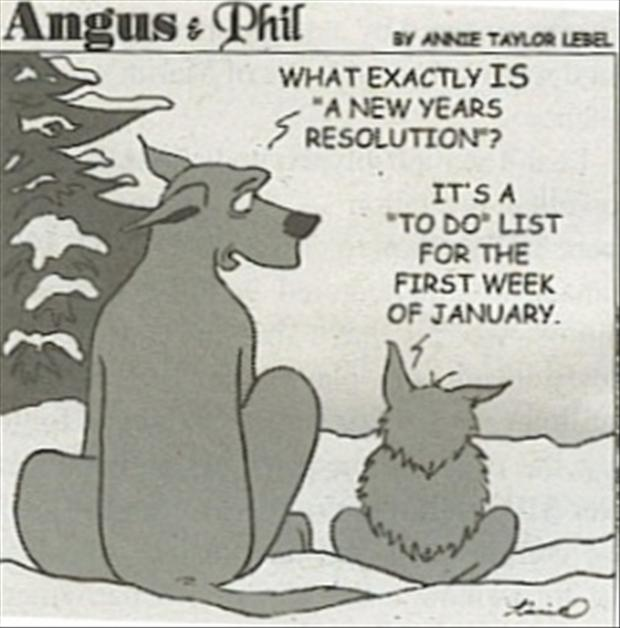 funny new years pictures, - Dump A Day