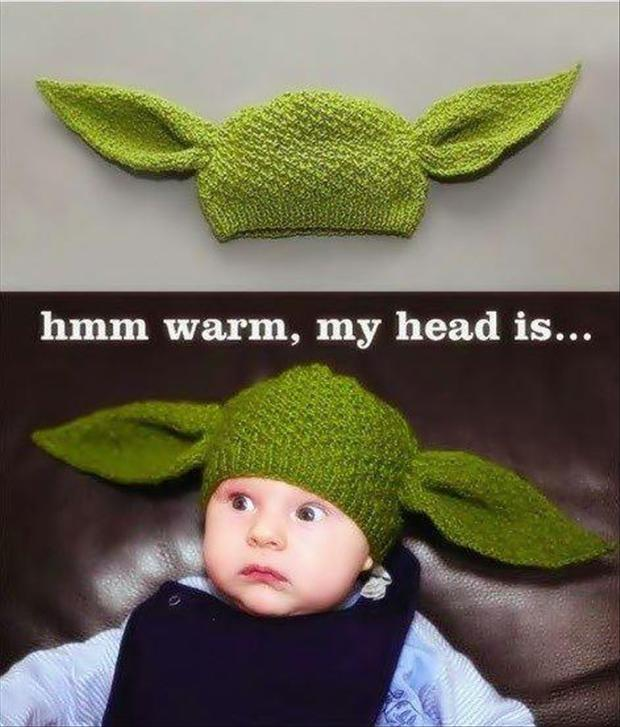 funny-star-wars-pictures-yoda-hat.jpg