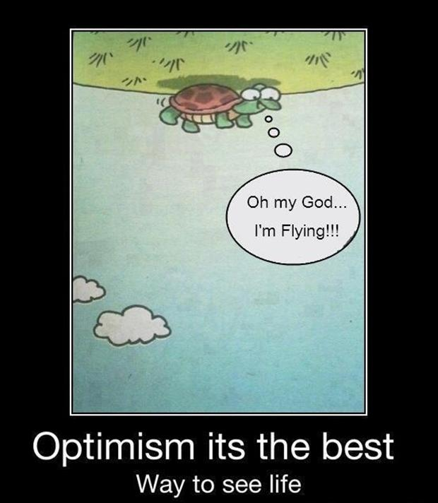 funny turtles, optimistic quotes - Dump A Day