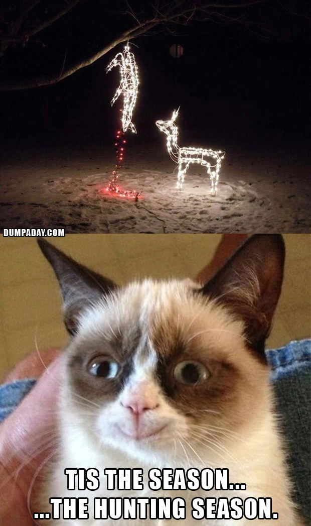 Funny Grumpy Cat Christmas Memes.Funny Grumpy Cat Christmas Funny Cat Pictures