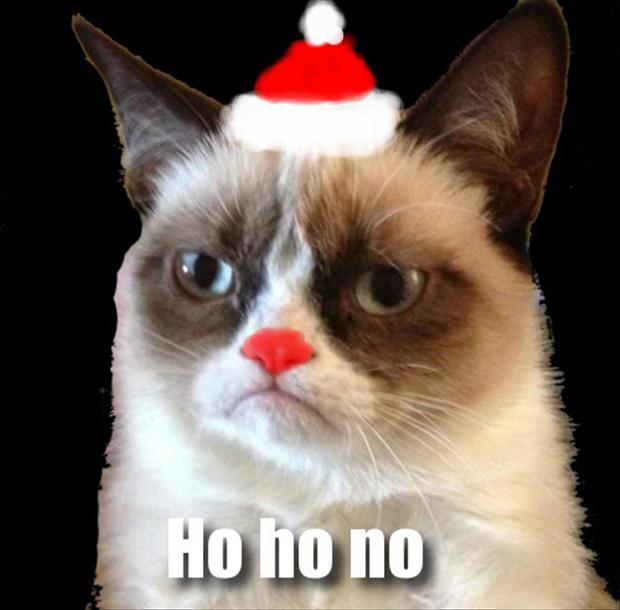 Grumpy Cat Christmas Pictures