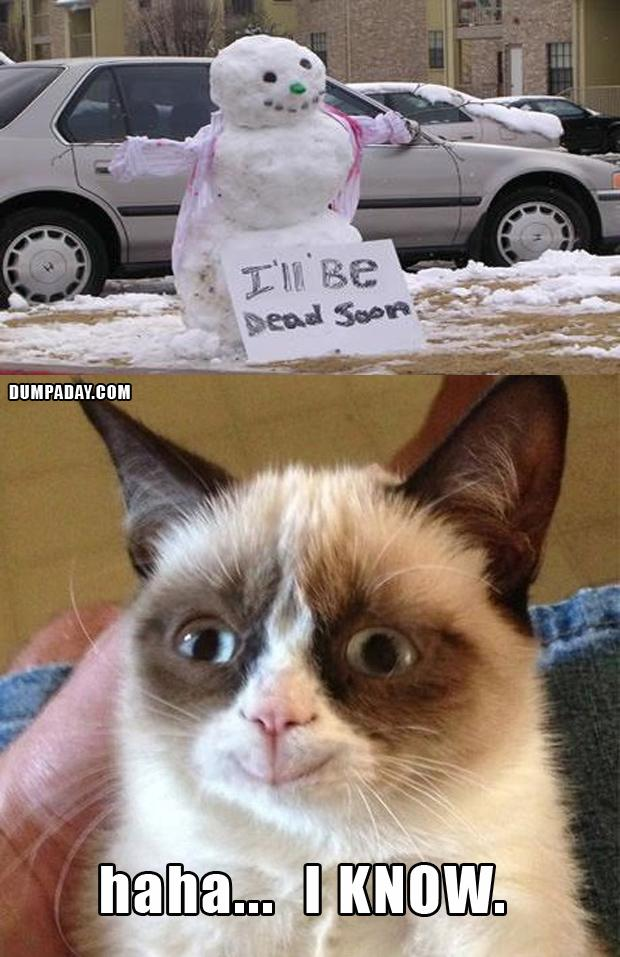 Charming Grumpy Cat Christmas Snow Man Melting What Makes Grumpy Cat Happy, Funny  Christmas Pictures
