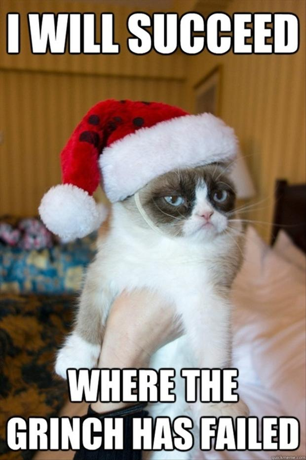 Grumpy Cat Funny Christmas Pictures