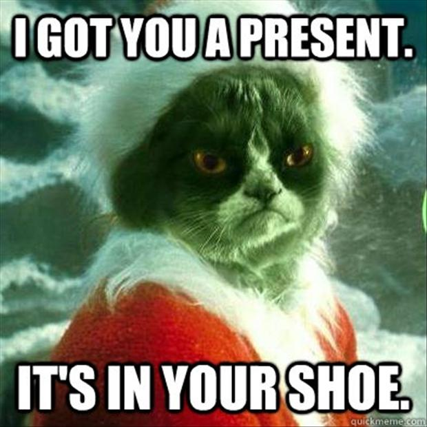 Grumpy Cat Got You Present Grinch
