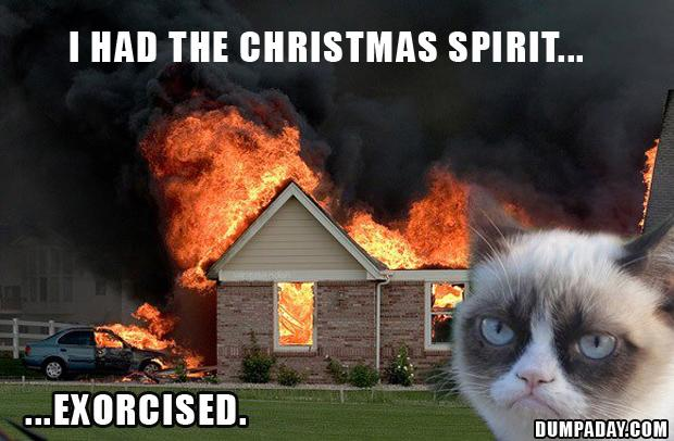 grumpy cat, i had the christmas spirit exorcised, funny grumpy cat ...