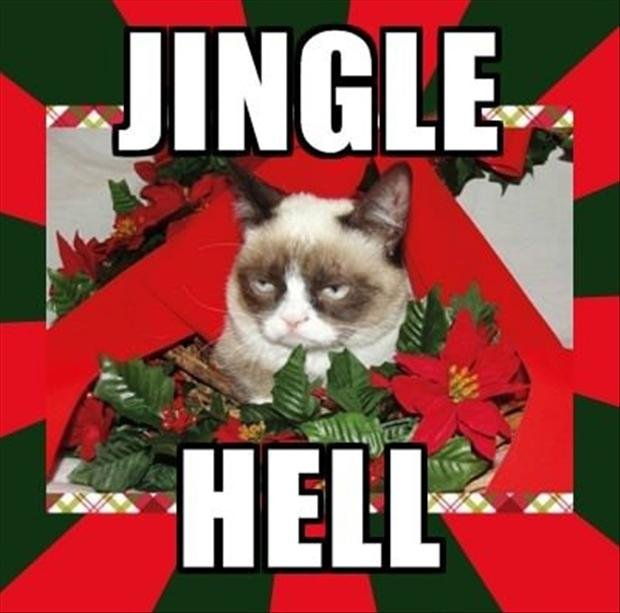 Funny Pictures Of The Day 40 Pics: Grumpy Cat, Jingle Hell, Christmas Pictures