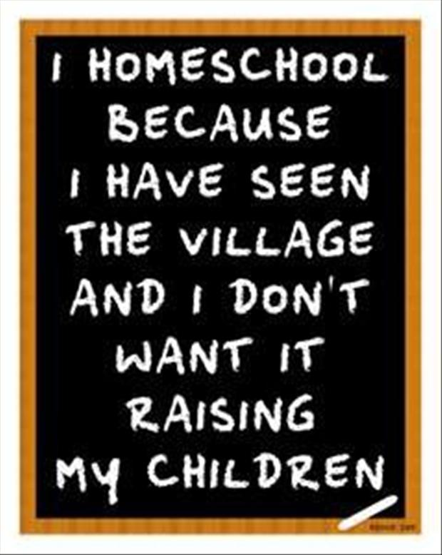 homeschool my kids, funny quotes - Dump A Day