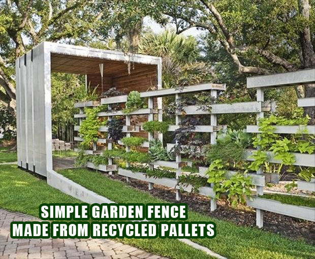 Vertical garden ideas using pallets photograph pallet idea for How to make a vertical garden using pallets