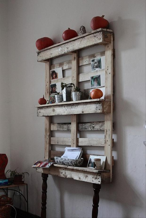 Pallet ideas kitchen shelf dump a day for Pallet kitchen ideas
