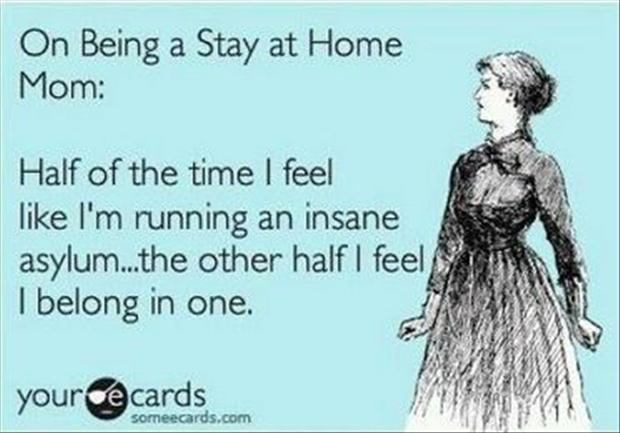 Quotes About Stay at Home Mom Stay at Home Moms Funny