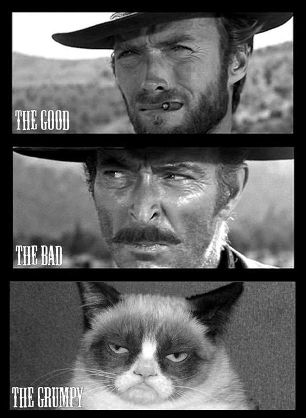 the good the bad and the grumpy cat, funny pictures - Dump ...