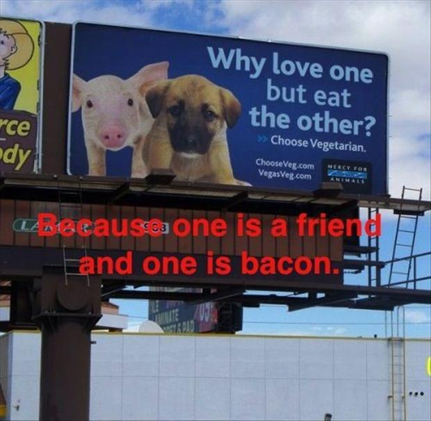 2 funny bacon signs