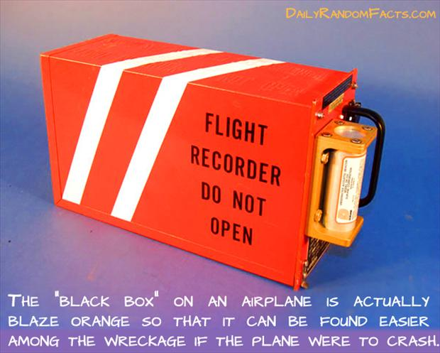 3 fun facts, black box on a plane