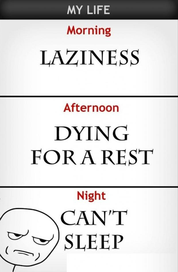 4 funny lazy pictures, can not sleep, rage comic