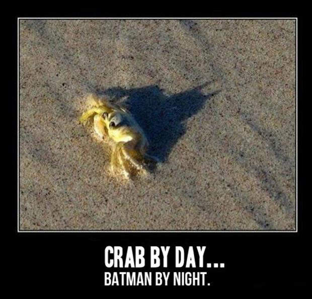 I am batman, funny pictures