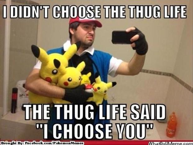 I choose you, funny pokemon