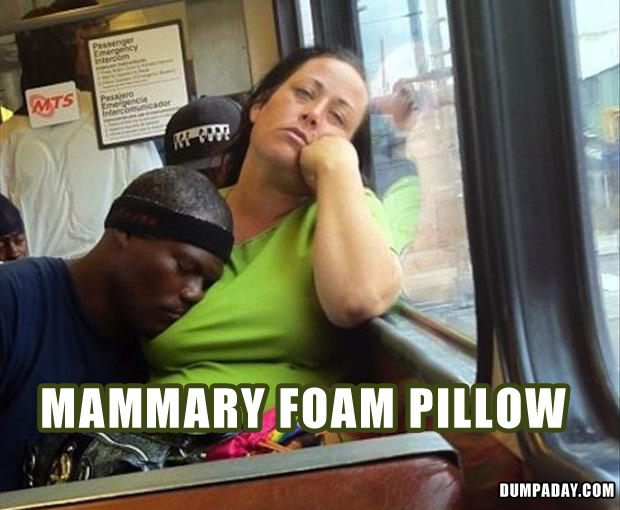 Mammary Foam Pillow