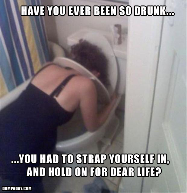 a drunk in on the toilet, funny pictures