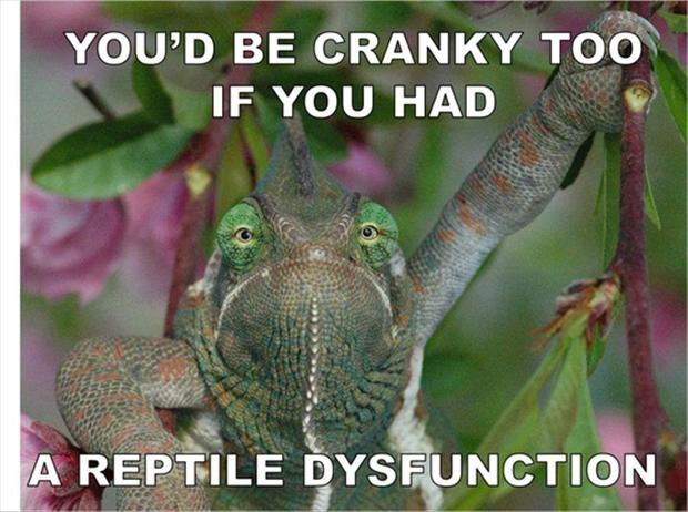 a erectile disfunction, funny pictures