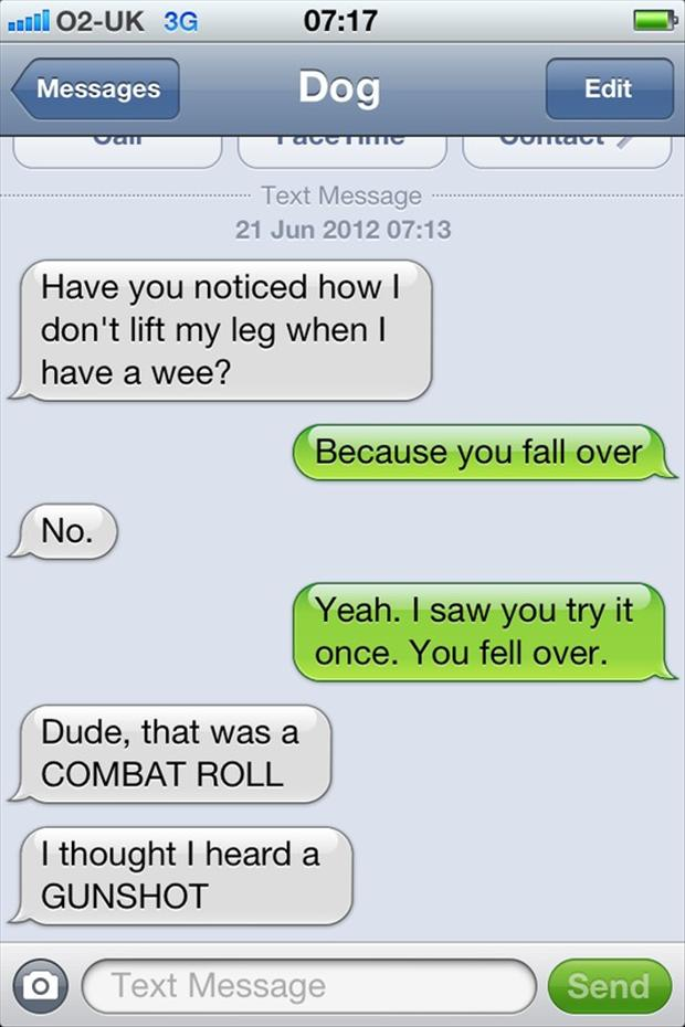 a funny text from dog, combat roll
