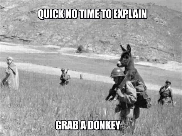 a no time to explain, grab a donkey