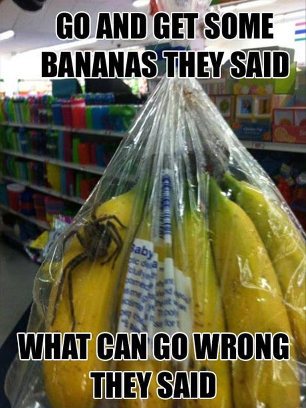 bananas, funny pictures