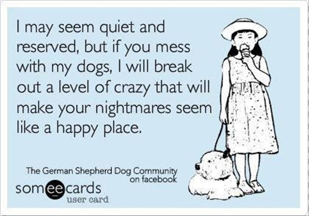 beware of dogs, funny quotes