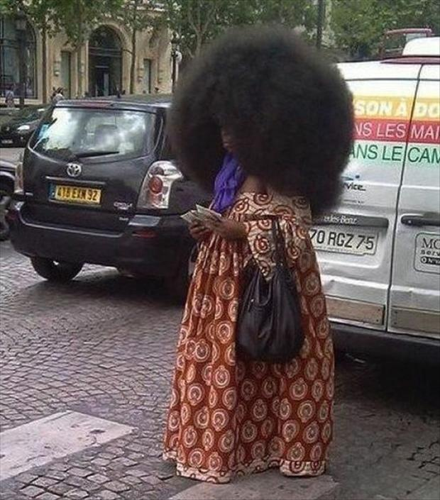 big afro, wtf pictures