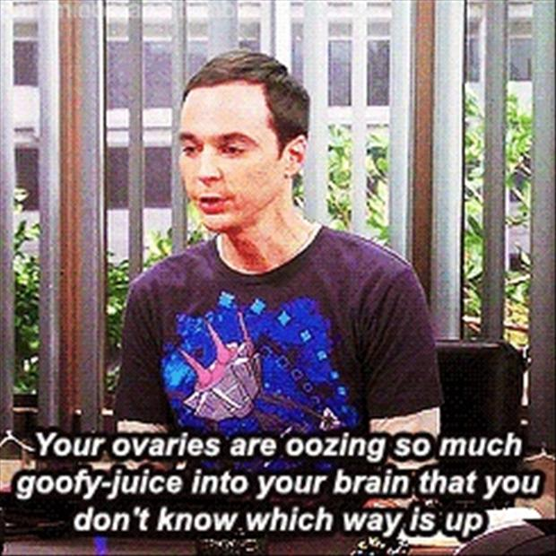 big bang theory, funny quotes from sheldon cooper